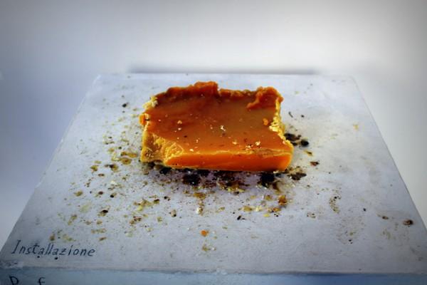 Cera d'api prodotta dalla famiglia Cardoni_Perepepè 2013_fotografia Cristina Principale